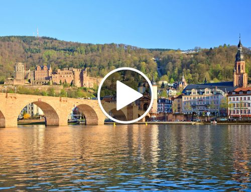 Video – On the AmaCerto with Cruise & Travel Specialist