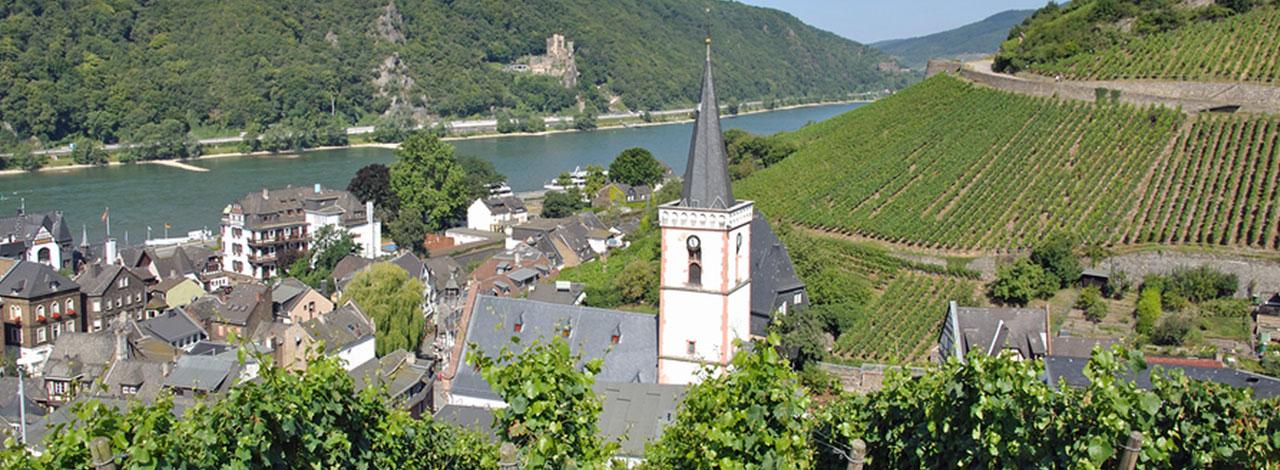 Rudesheim---Town