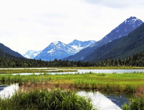 Alaska Cruise Tour