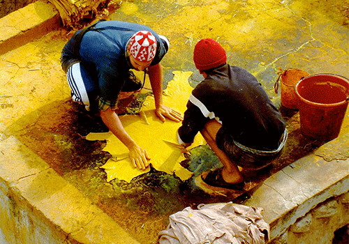 Morocco- Tannery at Fez