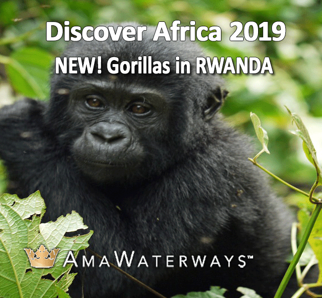AmaWaterways_Gorillas-in-Rwanda