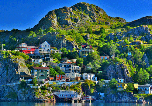 screeching-in-st-johns-harbour