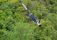 bungee-jumping-jumper