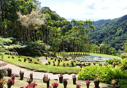 Martinique - Balata gardens