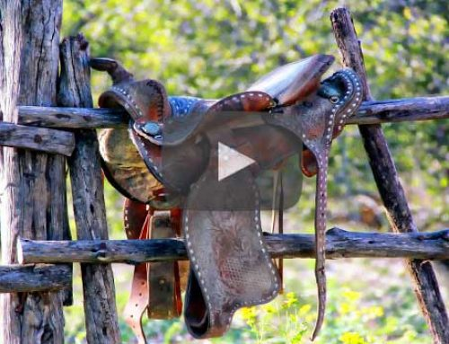 Dude Ranches & Disney | Vacations Close to home