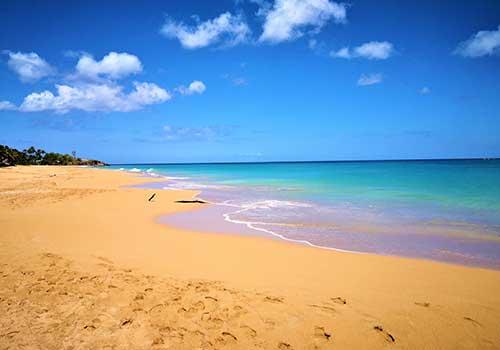 Guadeloupe-Islands-Caribbean--Golden-Sand
