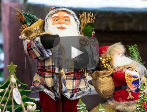 Christmas Markets River Cruise Review | with Ann-Marie Gaudet